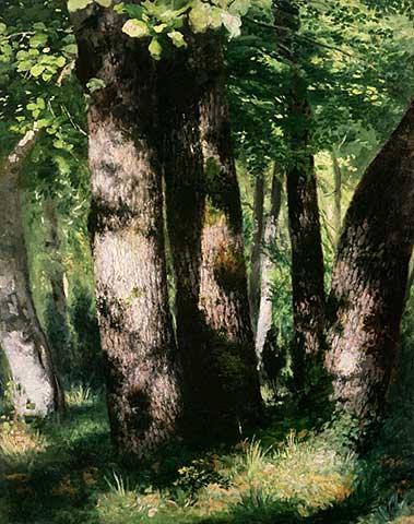 Auguste Renoir dans la foret de Fontainebleau